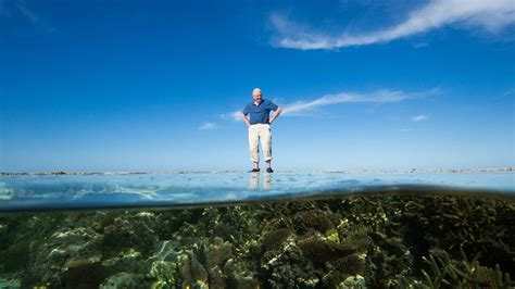David Attenborough's Great Barrier Reef - CBC Documentaries