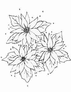 Disegnare Fiori oltre 25 fantastiche idee su vasi di fiori dipinti su, farfalla disegni da