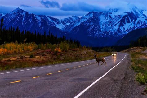 Travel In The Yukon Road Trip Photography Mallory On Travel