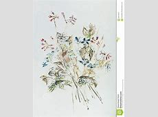 Hand Drawn Wildflower Bouquet Stock Illustration Image
