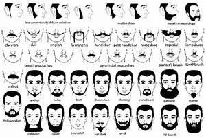 A Guide To Facial Hair Types  Never Use The Wrong Name