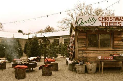 christmas tree lot ideas best 25 tree farms ideas on tree tree farms near me and