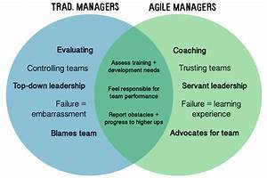 Role Of A Scrum Team Manager