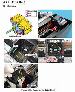 Epson Photo R240  R245  R250  Rx430 Print Head