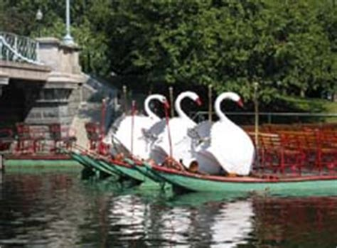 Swan Boats Sunday Hours by Swan Boat Rides Boston Central