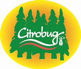 Image result for citrobug
