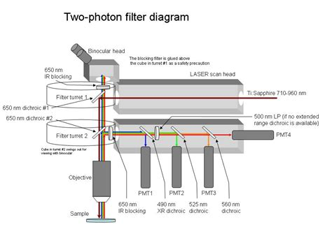 Filter Diagram by The Lab At Uci Microscopy Construction How To