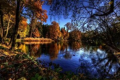 Lake Autumn Trees Birds Landscape Nature Forest