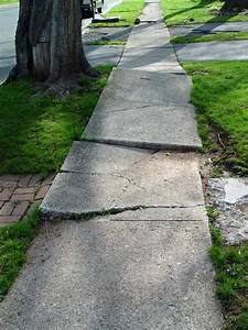 Good Street Trees