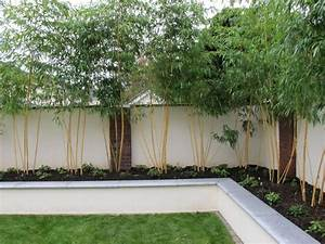 Rendered walls for gardens bing images outdoor for White garden walls