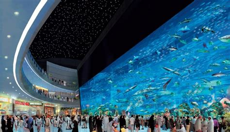 best aquariums in the world most amazing aquariums in the world 2017 top 10 list
