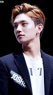 SEVENTEEN's Joshua Almost Got Into An Argument With His ...