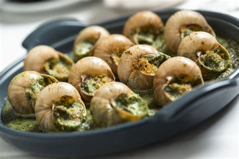 cuisine escargot escargot tripagency