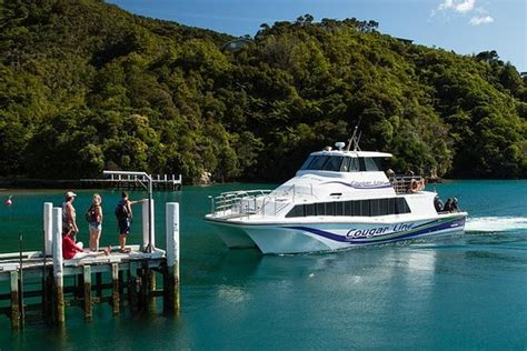 Picton Boat Trips by The 10 Best Picton Boat Tours Water Sports Tripadvisor