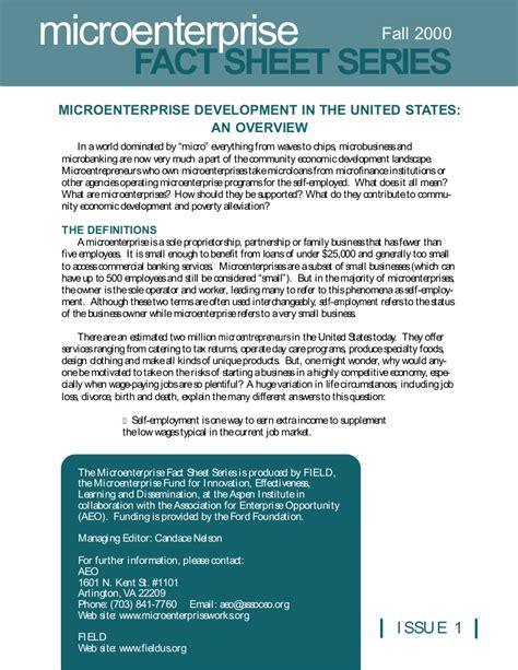Microenterprise Development in the United States: An ...