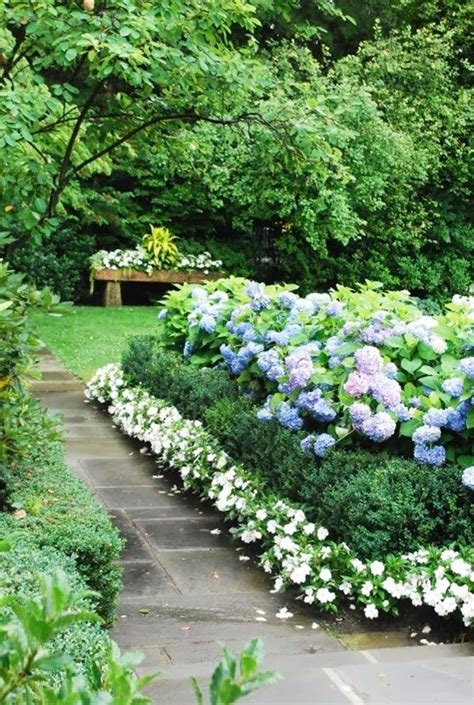 hydrangea garden design the most beautiful place in your garden border plants perennial plants flowers walkway