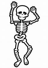 Skeletons Esqueleto Skelett Brincadeiras Ossos Anatomy Momjunction sketch template