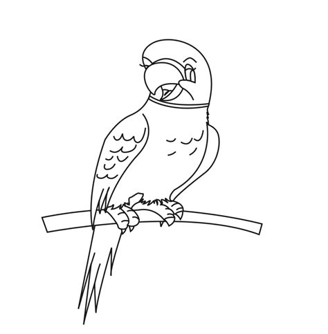 Coloring Pictures by Free Printable Parrot Coloring Pages For Animal Place