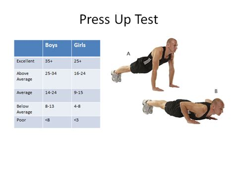up test fitness testing data st s gcse pe