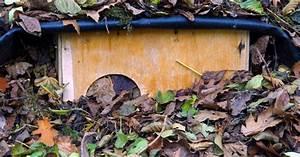 Tiere Im Insektenhotel : so berwintern tiere im garten mein sch ner garten ~ Whattoseeinmadrid.com Haus und Dekorationen