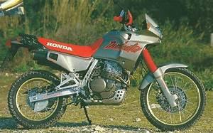 Honda Dominator 650 Fiche Technique : retour 1988 essais de la honda nx650 dominator moteur rfvc 644 cm3 rfvc 1984 2014 ~ Medecine-chirurgie-esthetiques.com Avis de Voitures