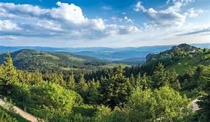 Bilder Vom Wald : urlaub bayerischer wald ferien in bayern wandern wellness und erholung arberland ~ Yasmunasinghe.com Haus und Dekorationen