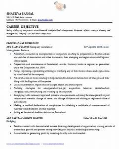 fine world s best resume pictures inspiration example With the best resume writing company