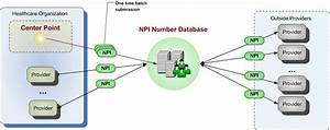 Npi Number Database  National Provider Identification