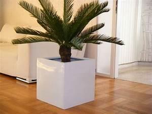 Pflanzkübel Weiß Rund : pflanzk bel cubo aus fiberglas in hochglanz wei bei east west trading ~ Whattoseeinmadrid.com Haus und Dekorationen