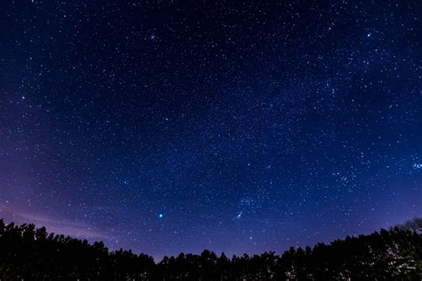 Free Images Forest Star Milky Way Atmosphere Night