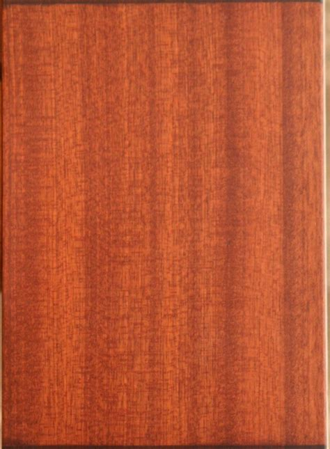 early american stain  exterior front door wood