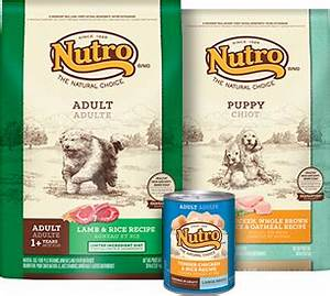 nutro With best natural dog food