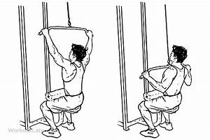 Wide  Pull Downs    Pullovers  U2013 Workoutlabs Exercise Guide