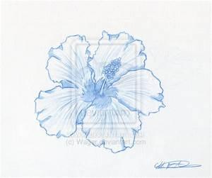 Hawaiian Flower Tattoo by Wager on DeviantArt