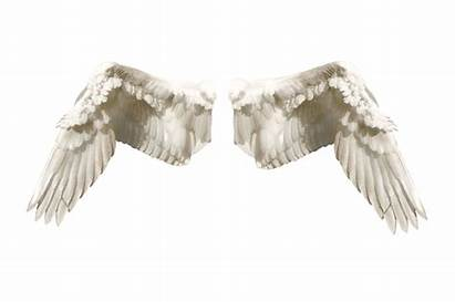 Angels Bible Types Different Wings