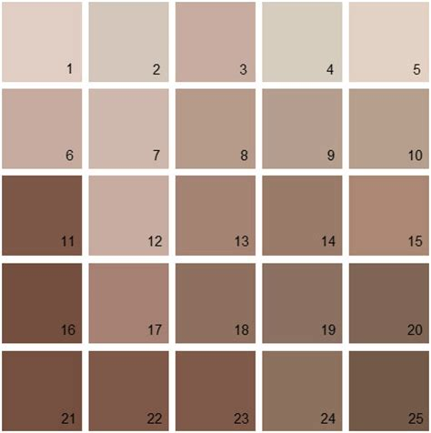 mocha paint colors design decoration