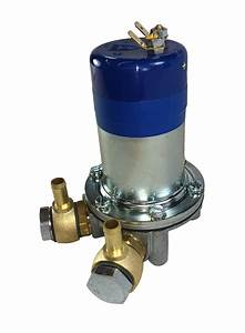 Fuel Pump Electronic Dual Polarity Banjo Mgb 65 To 80 From