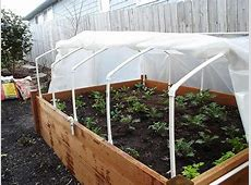 Cold Frames – The Other Structures for Growing Plants PART