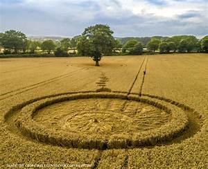 Crop Circle At Monarch U0026 39 S Way  Nr Wooton Wawen