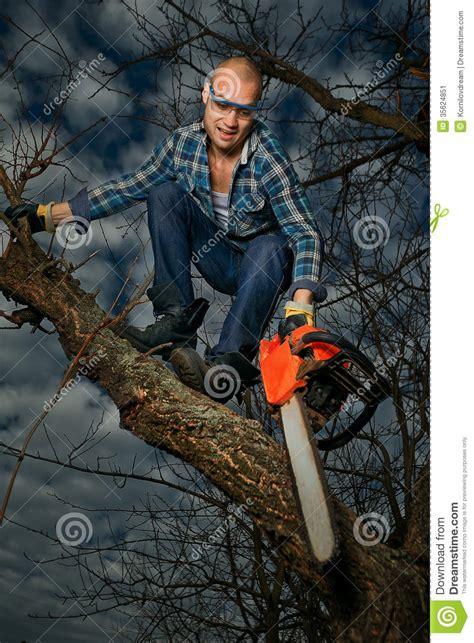 man cutting  branch stock image image