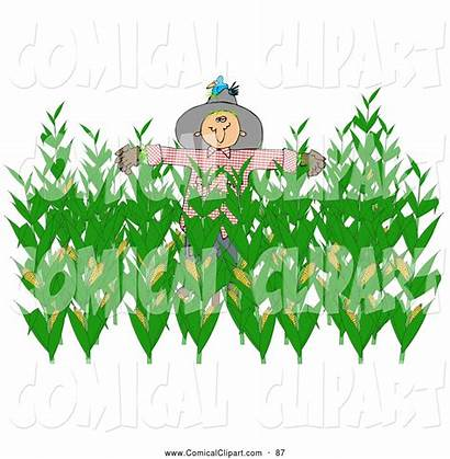 Corn Clipart Harvest Field Scarecrow Clip Clipground