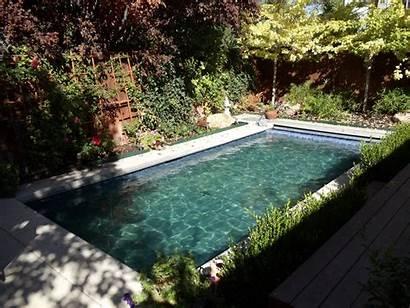 Gunite Pool Pools Inground Fiberglass Ct Dynasty