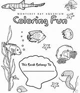 Coloring Bay Monterey Aquarium Sea Science Sheets Deep Ocean Pages Creatures Books Olympiad Christmas Worksheets Covers Animal 850px 77kb Template sketch template