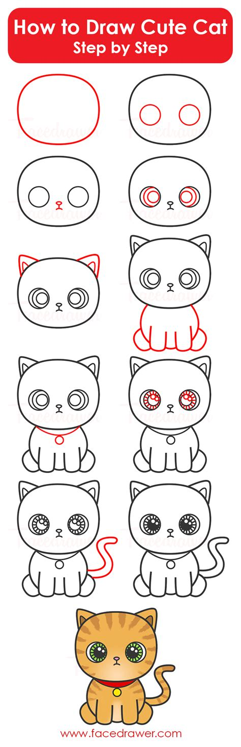 draw cute cat step  step infographic facedrawer