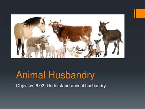animal husbandry powerpoint  id