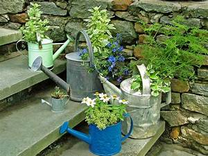Stunning Low-Budget Container Gardens | Landscaping Ideas ...