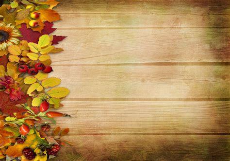 autumn vintage background leaves berries flower tree hd