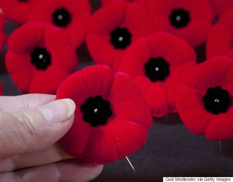 pictures of remembrance day poppies air canada remembrance day poppy ban has airline apologizing