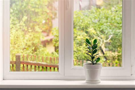Windows Ill by Best Window Sill Stock Photos Pictures Royalty Free