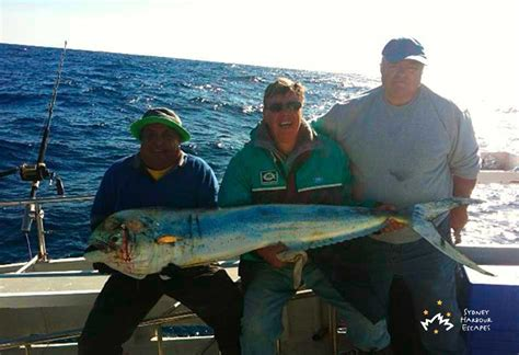 Small Fishing Boat Hire Sydney by A Team Boat Hire Fishing Charter Sydney Harbour
